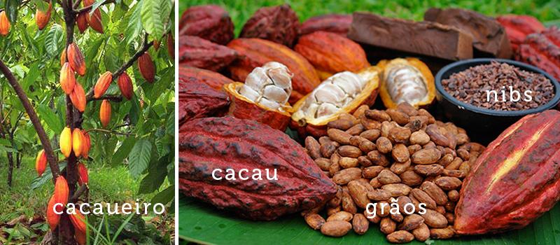 termos do mundo do chocolate