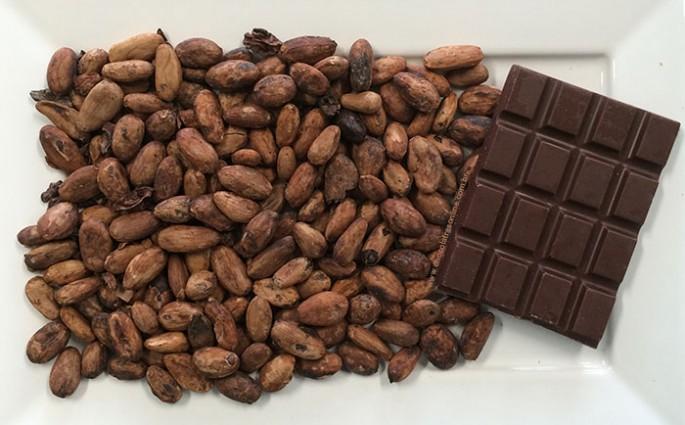 chocolate do grão à barra - bean-to-bar