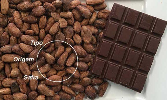chocolate do cacau como vinho das uvas