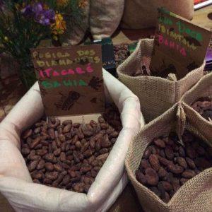 Curso chocolate bean to bar Amma e Mission Chocolate