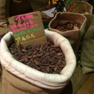 curso-bean-to-bar-amma-e-mission-chocolate-2-cacau-seco