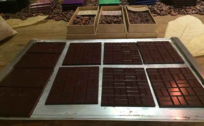 Curso chocolate bean to bar Amma e Mission Chocolate
