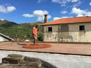 Fazenda Sagarana - Valdir pisando o cacau