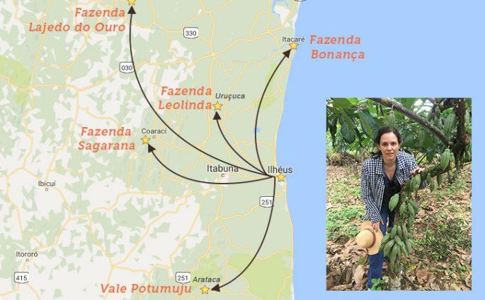 mapa para fazendas de cacau na Bahia