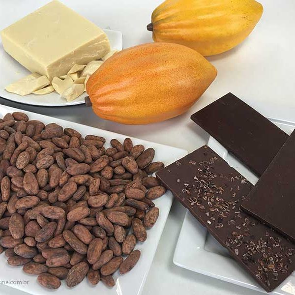 cacau, manteiga de cacau e chocolate
