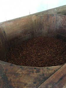 fazenda Bonança - fermentação
