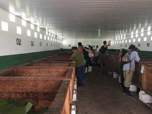 Fermentação na Fazenda Boa Sentença
