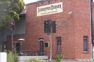 Scharffen Berger 2007