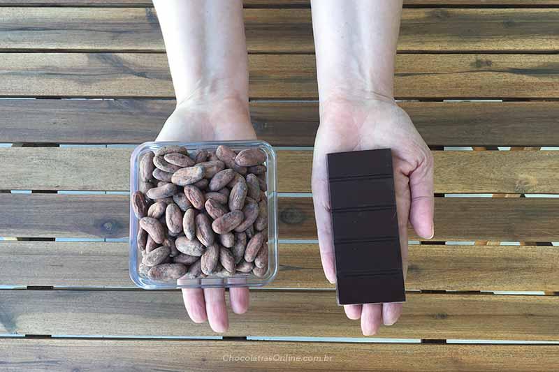 grãos de cacau e barra de chocolate em mãos